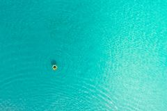 Aerial view of slim woman swimming on the swim ring donut in th royalty free stock photography
