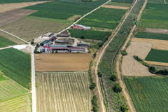 Aerial view of a small cow farm. In the middle of green agricultural area stock photo