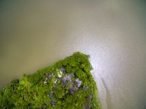 Aerial view of small green island in big river stock photography