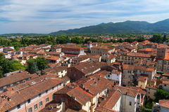 Aerial view of the small medieval town of Lucca, Toscana Tuscany, Italy, Europe. View from the Guinigi tower Stock Images