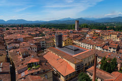 Aerial view of the small medieval town of Lucca, Toscana Tuscany, Italy, Europe. View from the Guinigi tower Royalty Free Stock Image