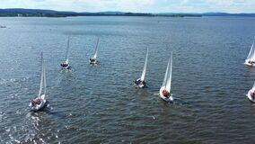 Aerial view of small sailing boats gliding in the river in the summertime. Video. Concept of summer sport, people
