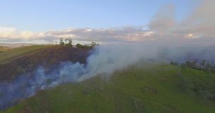 Aerial view smoke of wildfire. stock video footage