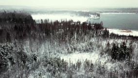 Aerial view, snowstorm in Siberia. 4 stock video