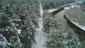Aerial view of winter forest and river. Aerial view of snowy winter forest and river stock video
