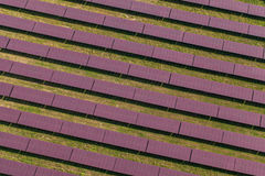 Aerial view of solar power plant Royalty Free Stock Image