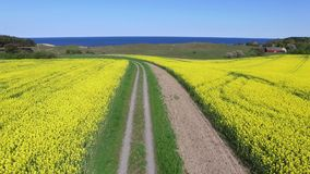 Aerial view of south Sweden. At spring stock video