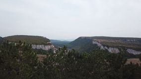 Aerial View: a span in the middle of a canyon, on one side of the cliff, on the other side of the forest. In the middle stock video
