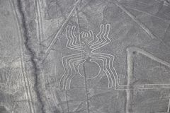 Aerial View of the Spider Nazca Lines. In the Peruvian Desert royalty free stock image