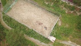 Aerial view of a sports football playground stock video