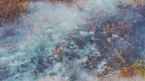 Aerial View. Spring Dry Grass Burns During Drought Hot Weather. Bush Fire And Smoke In Deforestation Zone. Wild Open