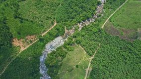 Aerial View Stone Canyon and Roads Meandering along. Among boundless wild jungles in highland stock video footage
