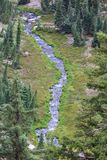 Aerial view of stream meandering down through pine fores. Aerial view of stream meandering down through alpine fores Royalty Free Stock Images