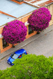 Aerial view of the street in historic quarter of Colonia del Sac Royalty Free Stock Photography