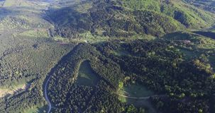 Aerial view. Summer rolling hills with green tops. Summer rolling hills with green tops, valley between the hills top, forests with tall trees, narrow roads to stock footage