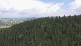 Aerial view of the summer time in mountains in border Poland and Czech Republic. Pine tree forest and clouds over blue sky. View f stock footage