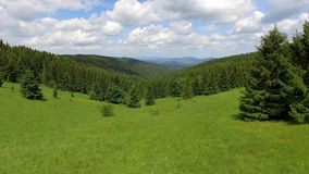 Aerial view of the summertime in mountains.Poland. Pine tree forest and clouds over blue sky. View from above. stock footage