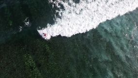 Aerial view of surfers at the water's edge. Indian stock video