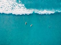 Aerial view of surfers and wave in tropical ocean. Top view. Aerial view of surfers and wave in tropical ocean Royalty Free Stock Images