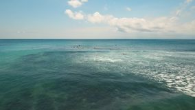 Aerial view surfers on the waves.Bali,Indonesia. Surfers on waves at Bali,Indonesia. Aerial view: People learning to surf. 4K video. Travel concept. Aerial stock footage