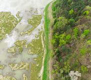 Aerial view of swamp and field with flood water. Near forest. Romania Stock Image