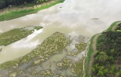 Aerial view of swamp and field with flood water. Romania Royalty Free Stock Images