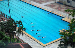 Aerial view of a swimming pool. Aerial view of people practising in a swimming pool Stock Images