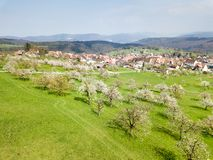 Aerial view of the Swiss village Nuglar with blooming orchard stock images