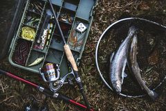 Aerial view of tackle box and fish on the ground Stock Images