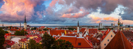 Aerial view of Tallinn old town, Estonia Stock Images