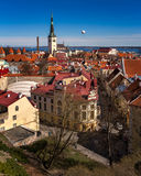 Aerial View of Tallinn Old Town and Olaviste Church Royalty Free Stock Photo