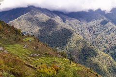 Aerial view of terraced plantation on hill slopes in Nepal Royalty Free Stock Image