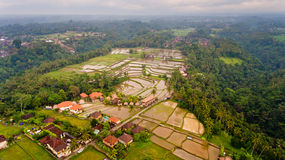 Aerial view terraces filled with water and ready for planting rice. Ubud, Bali, Indonesia stock photos
