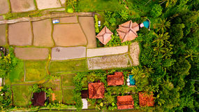 Aerial view terraces filled with water and ready for planting rice. Ubud, Bali, Indonesia royalty free stock images