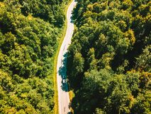 Aerial view of thick forest in autumn with road royalty free stock photos