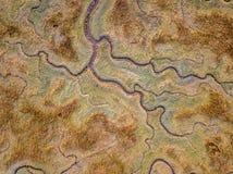 Aerial view of tidal marshland. Aerial top down view of tidal marshland with natural meandering drainage system in Verdronken land van Saeftinghe in Zeeland royalty free stock photos