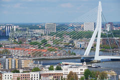 Aerial view to Erasmus bridge and the city of Rotterdam, Netherlands. Royalty Free Stock Images