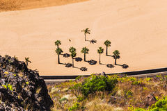 Aerial view to palms on the yellow sand beach Stock Images