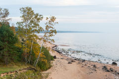 Aerial view to the Shoreline of Baltic sea beach with rocks and Royalty Free Stock Photography