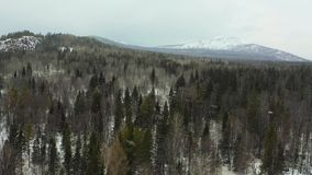 Aerial view to snowy woods forest and hills. Cloudy bad overcast foggy weather. drone flight.  stock footage