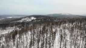 Aerial view to snowy woods forest and hills. Cloudy bad overcast foggy weather. drone flight.  stock video
