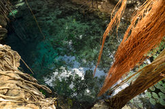 Aerial view to turquoise water lagoon in X-Batun cenote Royalty Free Stock Image