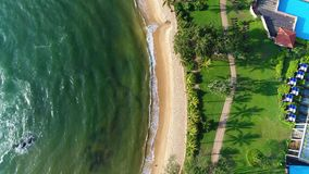 Aerial view from the top of hotel and sandy beach that washing by sea waves in Sri Lanka. The hotel is located among the palm trees on the sandy shore that is stock video