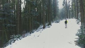 Aerial view of a tourist walking in winter forest in the Carpathians. 4k video stock footage