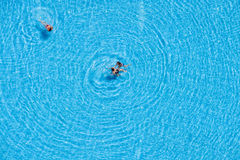 Aerial view of tourists swimming in the pool Royalty Free Stock Photography