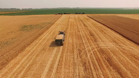 Aerial view: Tractor carrying wheat in the field. 4k. Aerial view: Tractor carrying wheat in the field. (UHD) 4k stock footage