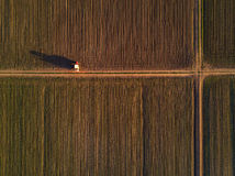 Aerial view of tractor in cultivated corn maize crop field. Agricultural machinery with crop sprayer spraying pesticide chemical on plantation Stock Photo