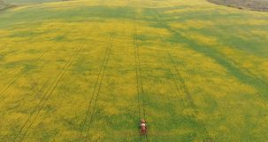 Tractor Equipment Fertilize Spray Agriculture Canola Crop Plant Field. Aerial view: Tractor Equipment Fertilize Spray Agriculture Canola Crop Plant Field royalty free stock photos