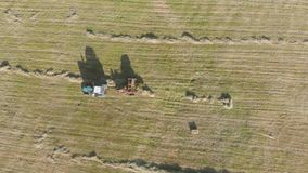 Aerial view of tractor with hay in the field. Bales of hay stacked in the trailer. Agricultural work. The concept of stock footage