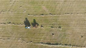 Aerial view of tractor with hay in the field. Bales of hay stacked in the trailer. Agricultural work. The concept of stock video